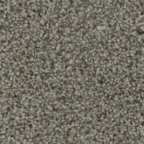 Fascination in Misty - Carpet by Phenix Flooring
