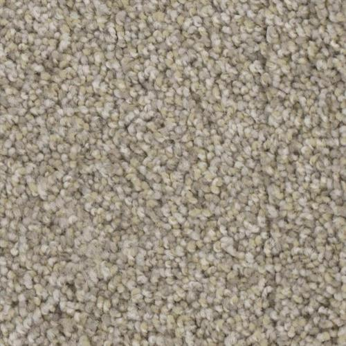 Fascination in Sea Salt - Carpet by Phenix Flooring