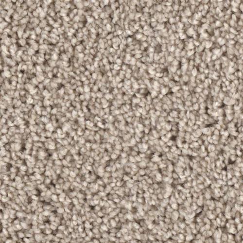 Front Runner in Chart Buster - Carpet by Phenix Flooring