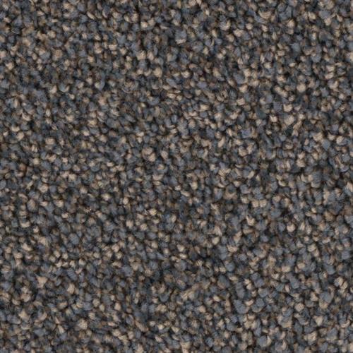 Front Runner in Masterstroke - Carpet by Phenix Flooring