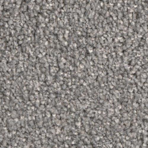 Front Runner in Prime - Carpet by Phenix Flooring