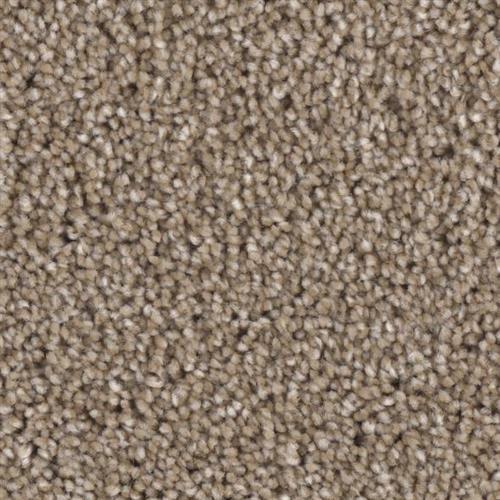 Front Runner in Smash - Carpet by Phenix Flooring