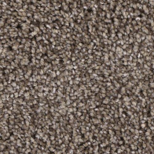 Front Runner in Upholder - Carpet by Phenix Flooring
