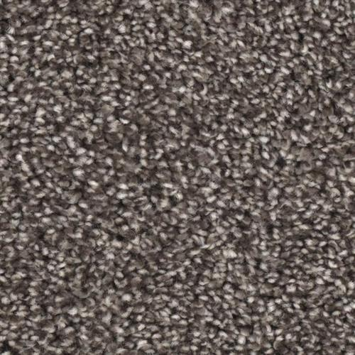 Front Runner in Victor - Carpet by Phenix Flooring
