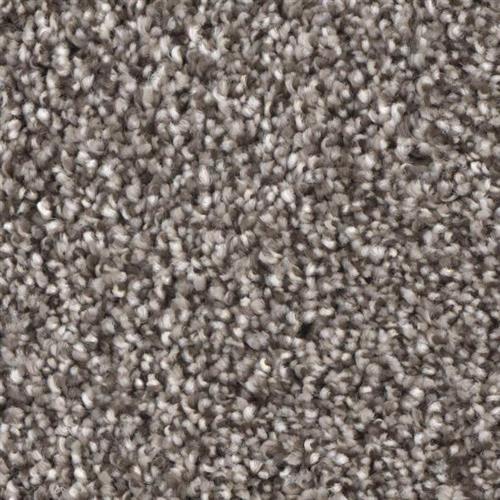 Front Runner in Wizard - Carpet by Phenix Flooring