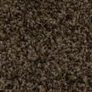 Carpet Cape Cod Honey Spice 102 thumbnail #1