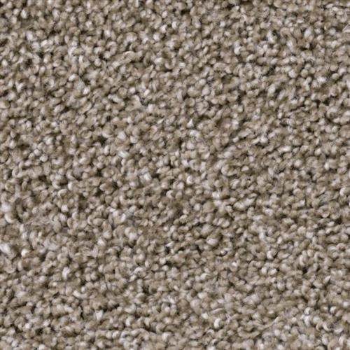 Refined in Central - Carpet by Phenix Flooring