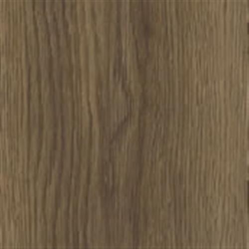 Lace Bark