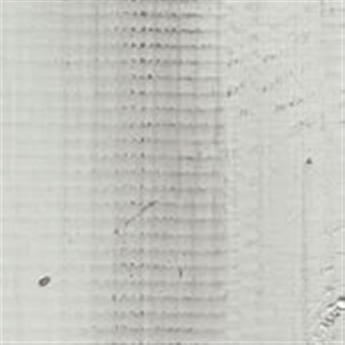 Point Of View in Winter White - Vinyl by Phenix Flooring