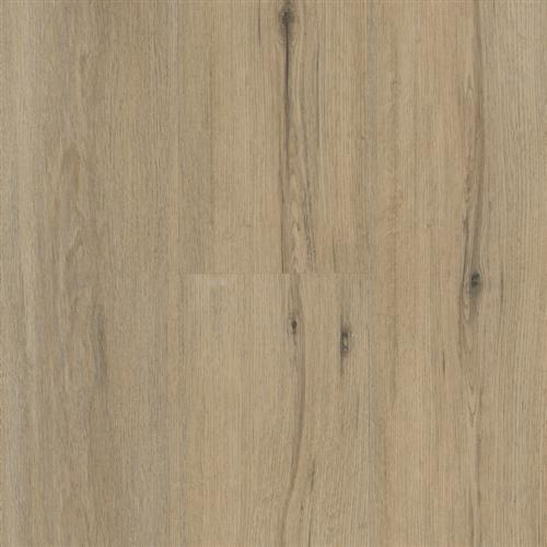 Impulse Butterscotch Oak
