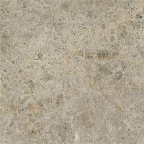 Natural Quartzite - Natural Stone Slab Savoie