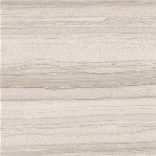 Bianco Veletta - 16x16