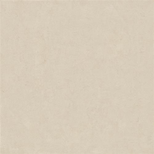 Boardroom Ivory - 12X24 Matte