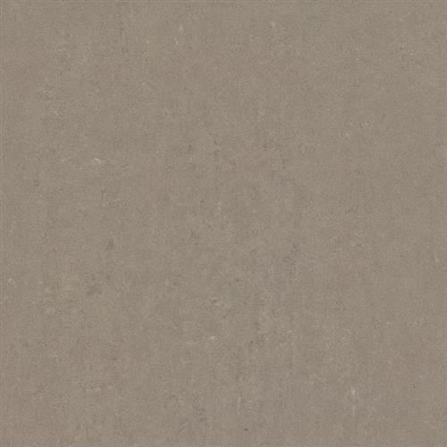Boardroom Taupe - 24X24 Matte