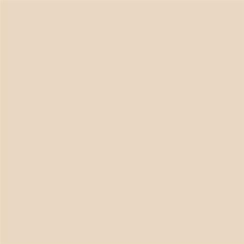 Wall Tile Collection Almond - 6X6 Matte