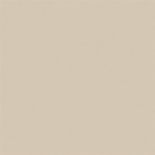 Wall Tile Collection Tender Tan - 4X12 Matte