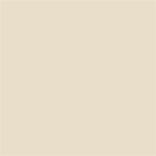 Intertech Unglazed Uni Ivory - 12X12