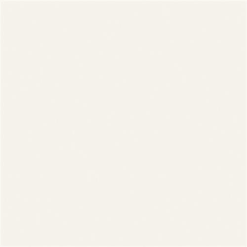 Intertech Unglazed Uni Super White - 12X12