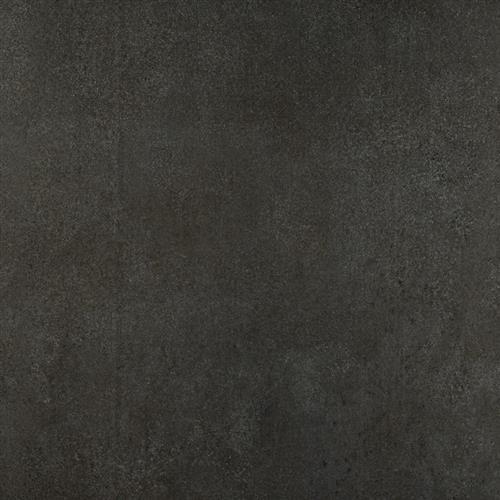 Graphite - 16x24