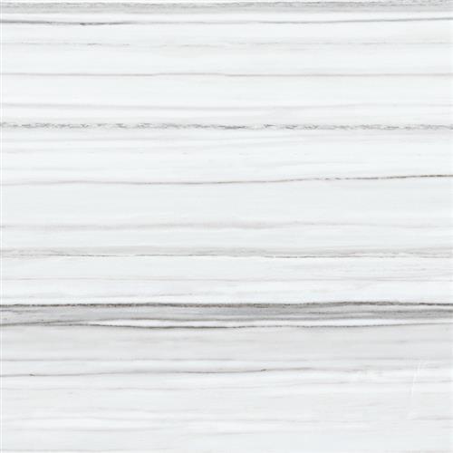 Contour Ceramic Zebrino - 16X16