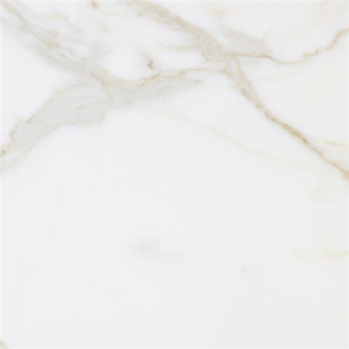 Marble Calacatta Calacatta Select - 18X18 Honed