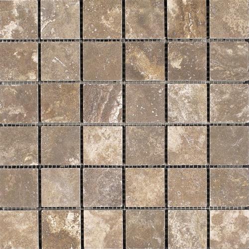 Inca Cocoa - Mosaic
