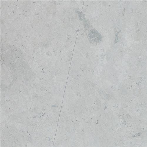 Limestone  Thala Gray 12X24 Honed