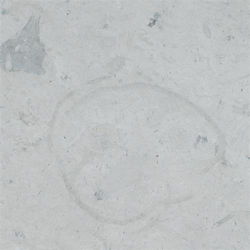 Limestone  Thala Gray 18X18 Honed