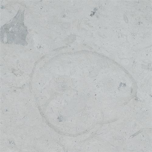 thala Gray 18x18 Honed