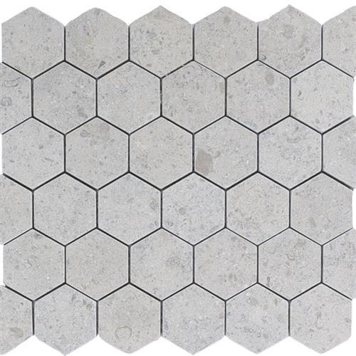 Limestone  Gascogne Blue 2X2 Suede Hexagon Mosaic