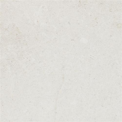 Limestone  Chihuahua 12X24 Honed
