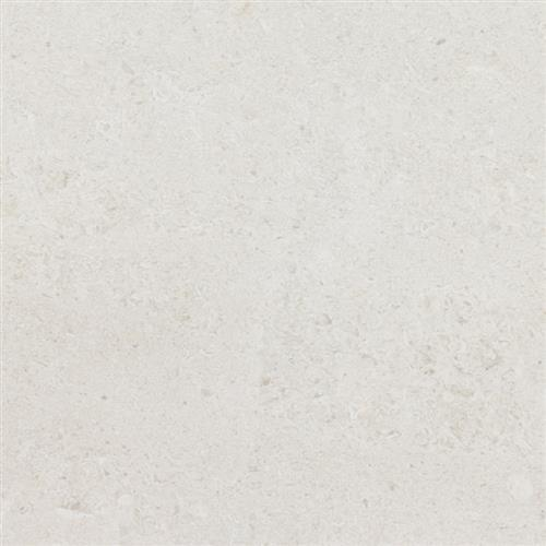 Limestone  Chihuahua 12X12 Honed
