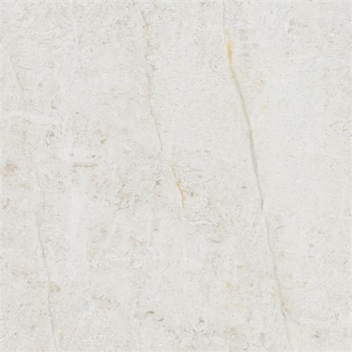 Limestone  Chihuahua 18X18 Honed