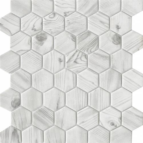 Echo White 2 Hexagon