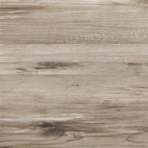 Theory Taupe 8X45
