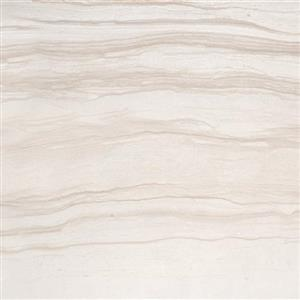 CeramicPorcelainTile Action F45ACTIAD1123P Advance