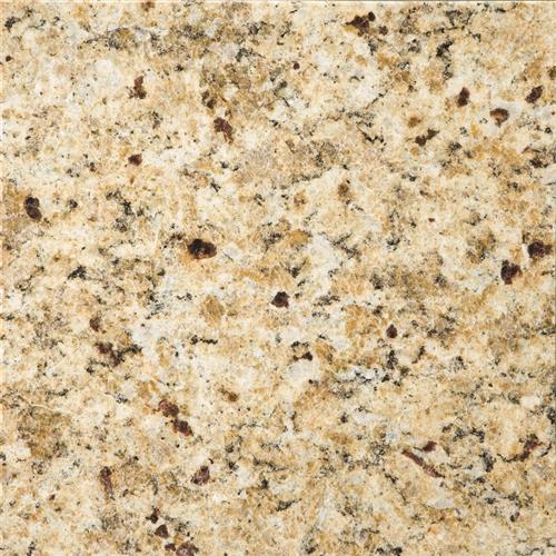 Granite Grante New Venetian Gold