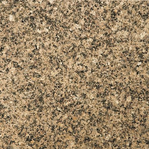 Granite Tropical Tan
