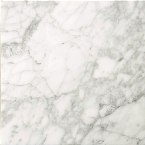 Marble Bianco Gioia Honed