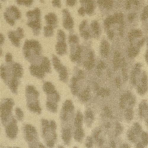 Leopard Snow Leopard 127
