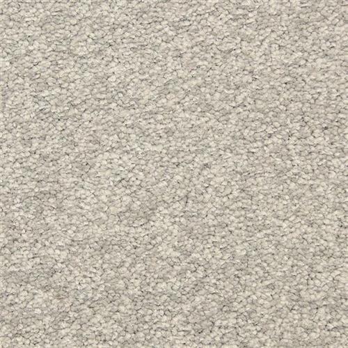 Morgan Bay Falcon Grey 855