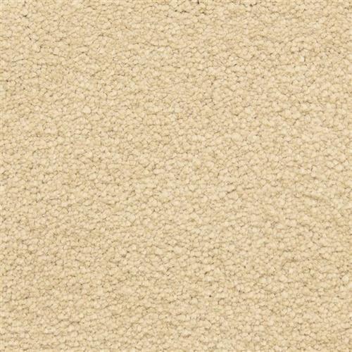 Ravishing in Appealing - Carpet by Masland Carpets