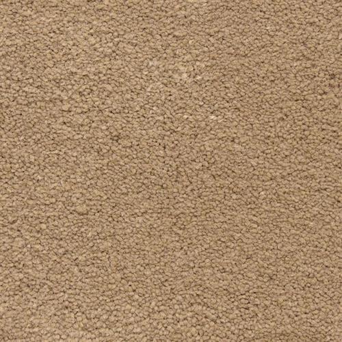 Ravishing in Inviting - Carpet by Masland Carpets