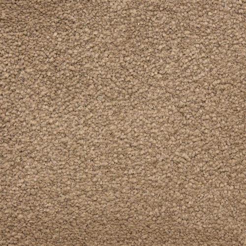 Ravishing in Handsome - Carpet by Masland Carpets