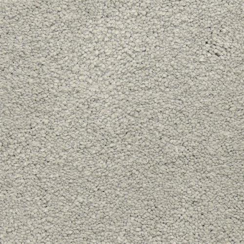 Ravishing in Clever - Carpet by Masland Carpets