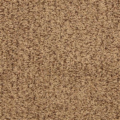 Sea Grass Schooner 324