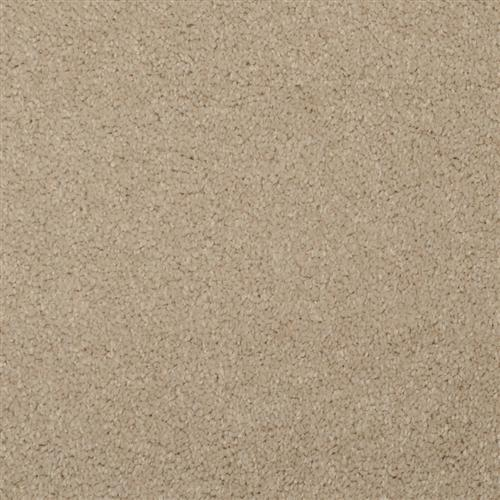 Softly Stated Sandy Taupe 208