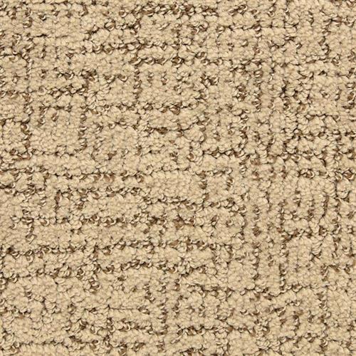 Dorado in Bronco - Carpet by Masland Carpets