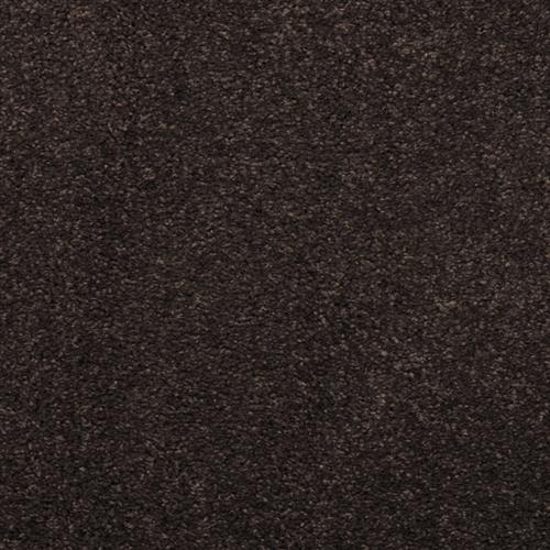 Embrace Black Olive 735