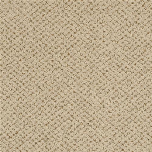 Montauk in Hamlet - Carpet by Masland Carpets
